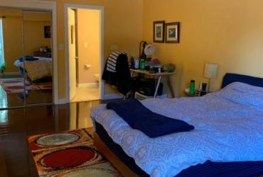 $500 UPDATED ROOM FOR RENT 3/2 HOUSE IN TAMPA (tampa bay)