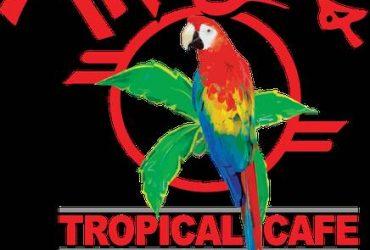 DAY TIME HOSTS – MANGOS – SOUTH BEACH (South Beach)