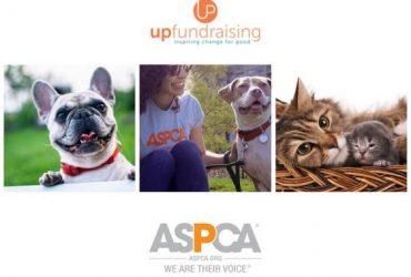 Earn 700-1000 a week supporting – ASPCA (QGL) (New York City)
