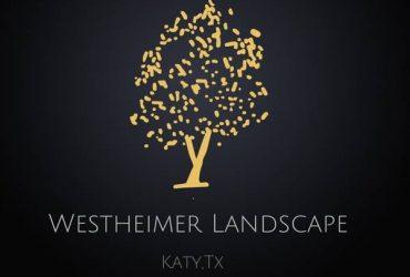 New Landscaping company to Katy (Katy)