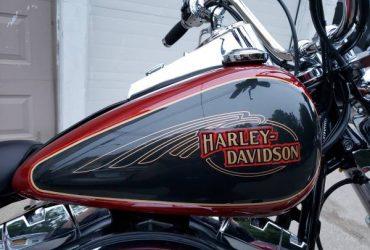 Harley-Davidson Softail Custom (the finest anywhere) – $11300