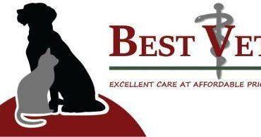 Veterinary Technician and Receptionist