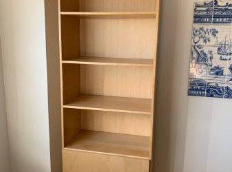 Tall Shelf/ Cabinet Bookcase (TriBeCa NY)