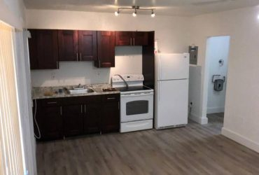 $1150 / 1br – Charming Newly remodeled 1/1 (Miami)