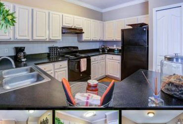 $1179 / 790ft2 – 1×1 Apt. with a Walk-In Closet & a Laundry Room Now Available!