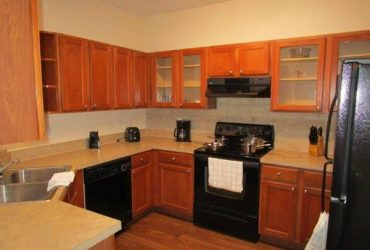 $1675 3 Bedroom/2 Bathroom available ASAP! (Clearwater, FL.)