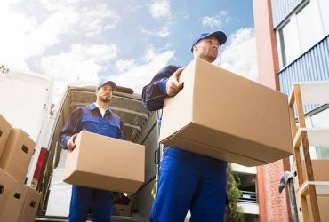 Movers and Drivers (palm beach county)
