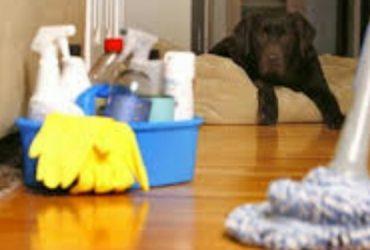 LIVE IN HOUSEKEEPERS NEEDED IMMEDIATELY (HAMPTONS)