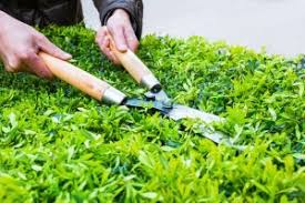 Landscaping maintenance positions open (Redlands)