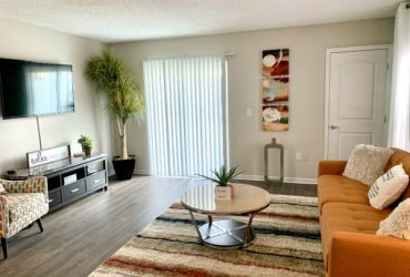 $1205 / 2br – 1000ft2 – The smartest special of the season! (Dunedin)