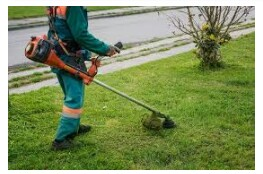 Foremen and experienced Grass Cutter's needed. (East Fort Lauderdale)