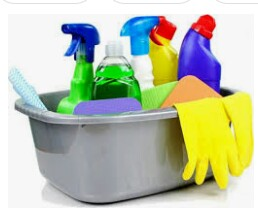 Cleaners (palm Coast,Daytona,Deland)