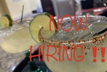Bartender & WAITRESS (Ridgewood, Queens)