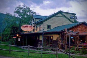 relocate to THE CATSKILLS! (near Belleayre Mountain/Phoenicia)