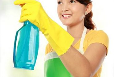 Limpiador / Cleaner (Leesburg)