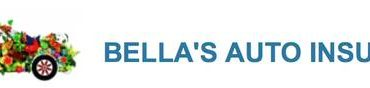 BILINGUAL INSURANCE AGENT/CUSTOMER SERVICE DFW AREA!! (DFW METROPLEX)