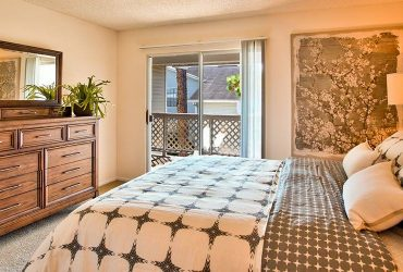 $1049 / 1br – 923ft2 – Built-in Bookshelves, In select homes, Private Patios & Balconies