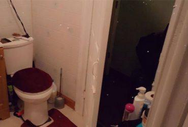 $750 Room Available (Brooklyn)