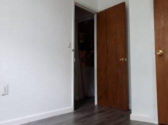 $1000 Bushwick apt/room available immediately (Bushwick)