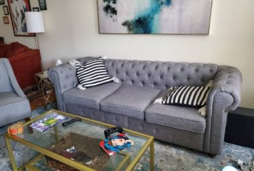 Two Free Couches (sofa and a love seat) (Crown Heights)