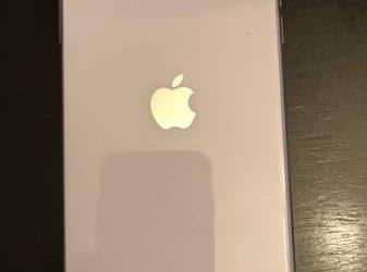 iPhone 11 – $350 (Orlando)
