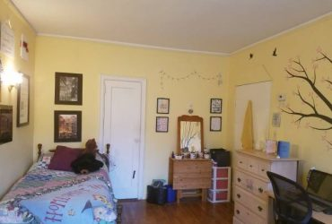$950 Female roommate wanted (Long Island City)
