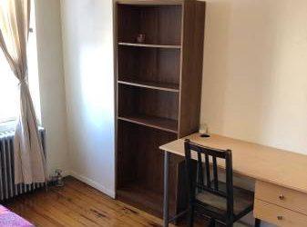 $950 Spacious furnished bedroom in 3br apt, near L train, DeKalb stop (Ridgewood, borderline of Brooklyn and Queens)