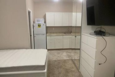 Studio for 250 per week and a room for 175 per week (Richmond Hill)