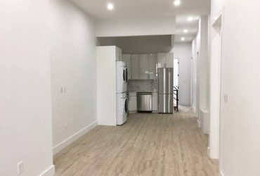 $1175 / 100ft2 – ASAP MOVE IN*PRIVATE BATHROOM*IN-UNIT LAUNDRY*DUPLEX*PATIO (Greenpoint 3 STOPS TO MANHATTAN ON L)