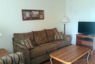 $50 Lugar para joven Sofa cama de renta sofa bed for rent (North Houston)