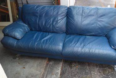 Free leather sofa (pompana)