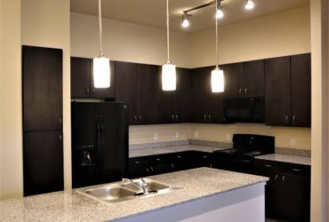 $1429 / 2br – 1250ft2 – $1000 OFF your 1st Month! 2 Bed 2 Bath with appliances! (Katy)