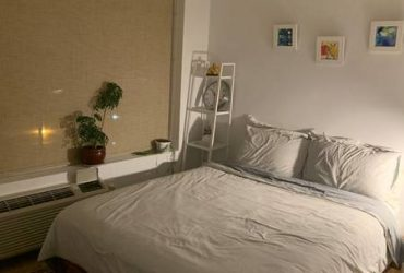 $360 / 680ft2 – Lovely female in need of a perfect roommate for a empty bedroom!