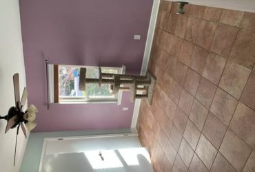 $700 / 1400ft2 – Room and bath for rent in 3b2b house (Grapevine)