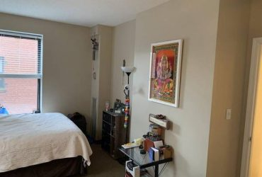 $400 Room in east Trevino St! 3bed/3bath. Lgbt (156 Trevino St,)