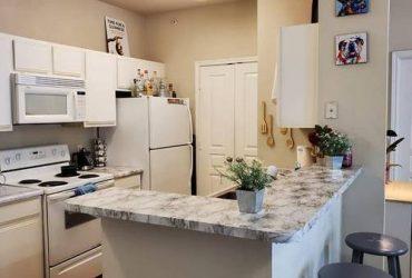 $555 / 950ft2 – 555$ per person in 2/2 (San Antonio)