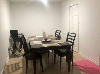 $700 / 1129ft2 – Female Professional/Student Welcome! 3/1 Furnished house!! – $700 (Castle Hills – Alamo Heights)