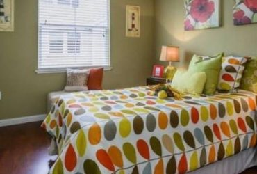 $360 Seeking a Roommate to fill a room in our beautiful apt