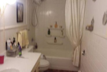 $540 Condo to Share in Downers Grove (Downers Grove)