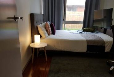 $355 / 799ft2 – Need a reliable roommate