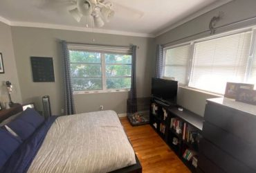 $700 Room Available 8/15 in Apartment in Wagener Terrace (Wagener Terrace-Downtown Charleston)