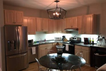 $400 Downtown Charleston Room for Rent Great Location! (109 Coming St Charleston, SC 29403)