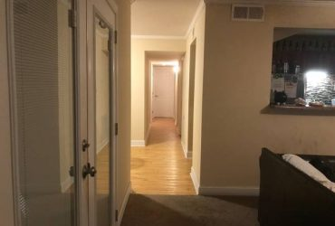 $530 Roommate Needed AUG 1st $530/month + Utilities (CHARLESTON)