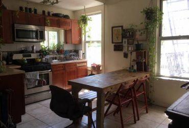 $1400 1400 Spacious & sunny bedroom in Williamsburg (Brooklyn)