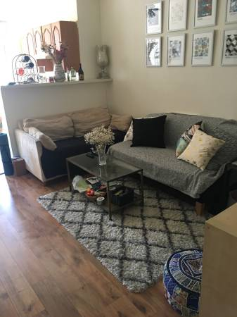 $825 2 sunny rooms available in 3bdrm in Park Slope (Park Slope)