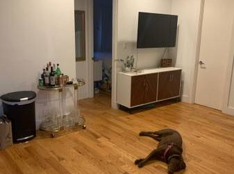$1433 Gorgeous exposed brick room for rent(W/D in unit!!!) (Williamsburg)