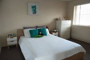 $345 / 675ft2 – Renting an excellent bedroom just near shopping and fun!