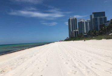 $1600 / 1000ft2 – Stunning condo in Miami Beach on the beach (Miami Beach)