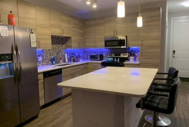 $765 Beautiful apartment- two bed rooms available. (st.petersburg)