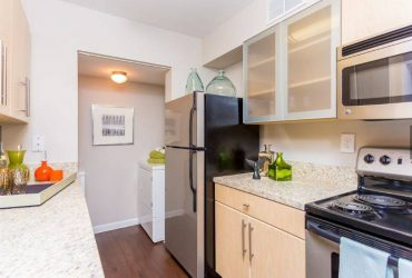 $1490 / 1br – 738ft2 – 1 bed-immediate move in #1206, lake view, 2nd floor, washer/dryer